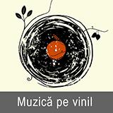 Muzica pe vinil