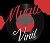 Disc Vinil - muzica pe vinil
