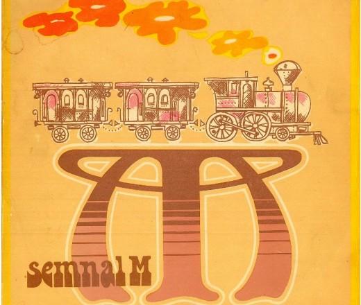 SEMNAL M - 1 an